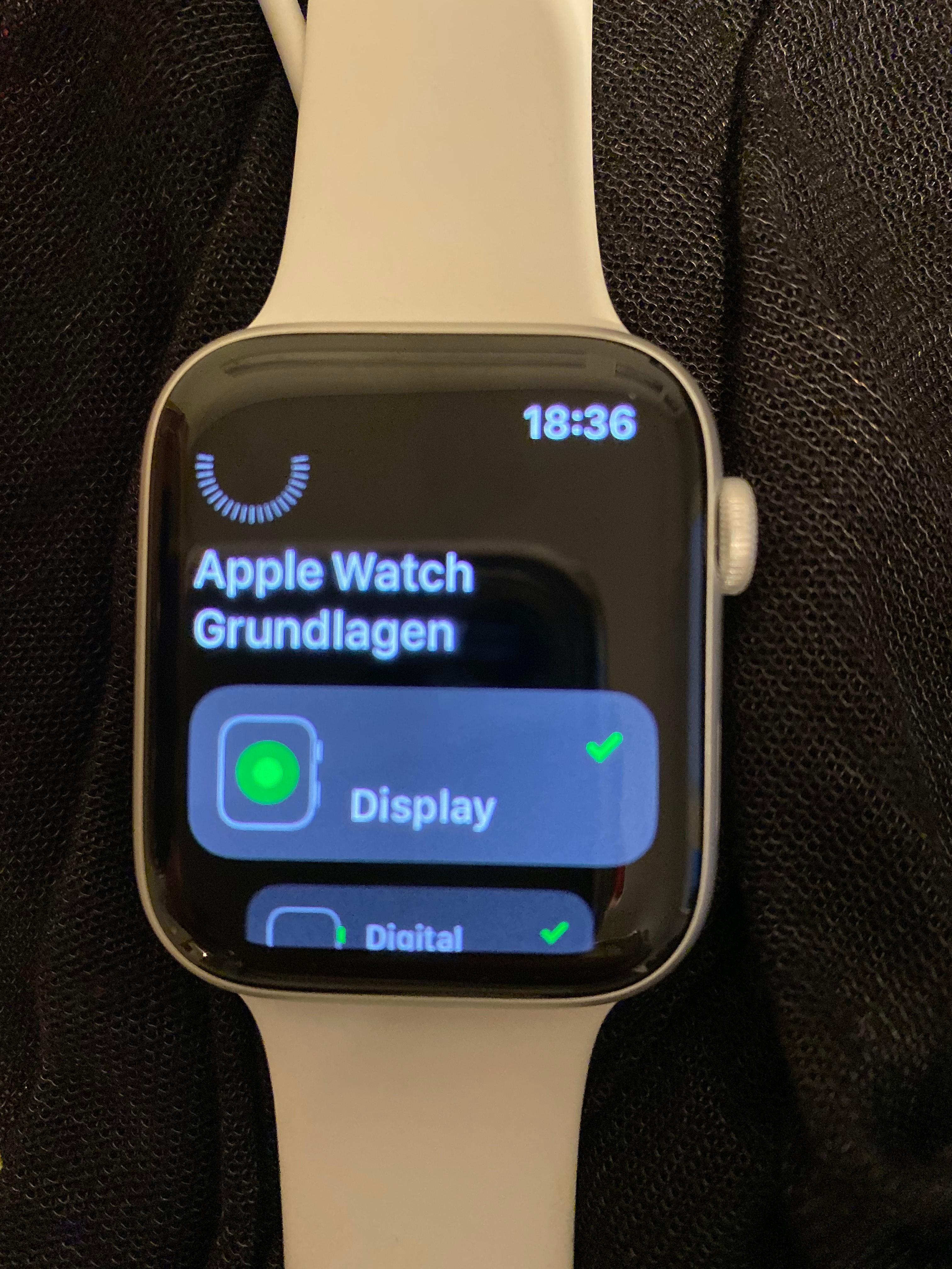 Kopplungs- und Verwendungsprobleme Apple Watch Series 5